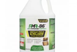 1. RMR-86 Instant Mold Stain & Mildew Stain Remover (1 Gallon)