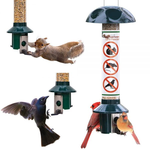10. Roamwild PestOff Squirrel Proof Bird Feeder Mixed Seed Sunflower Heart Version