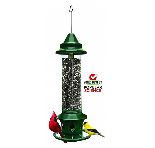 2. Wild Bird Feeder with Cardinal Ring and 6 Feeding Port