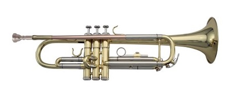 5. LJ Hutchen Bb Trumpet with Plush-Lined Case