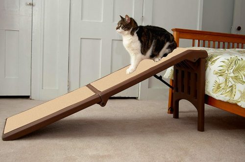 4. Pet Gear Free Standing Ramp for Cats and Dogs. Great for SUV's or use Next to Your Bed