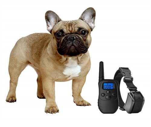 7.eXuby-Shock-Collar-for-Small-Dogs-with-Remote-Includes-2-Collars-mall-and-MediumFree-Dog-Clicker-Training-3-Modes-Sound-Vibration-with