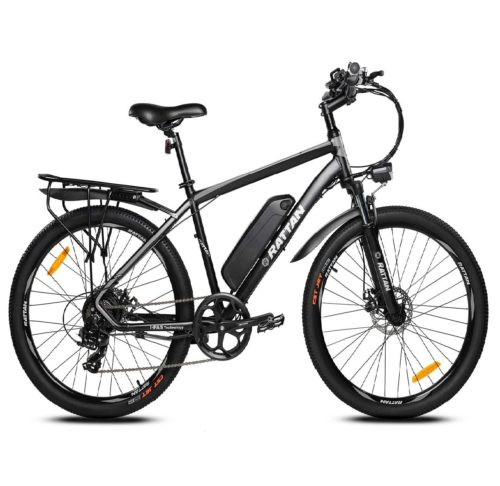 12. Rattan Challenger Removeable Battery Electric Bike for Adult