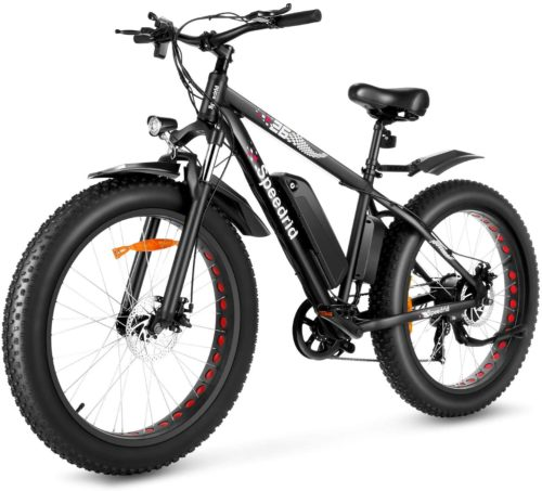 9. Speedrid Best Electric Bike with Removable Battery and Fat Fire